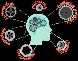 Schéma de la performance cognitive